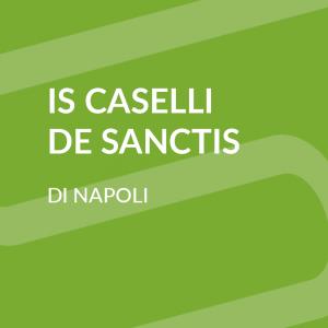 """Istituto Istruzione Superiore Statale """"Giovanni Caselli"""""""